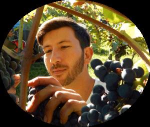 Votre séjour en Madiran pour découvrir la culture de la vigne ici, avec Andréas, un jeune vigneron