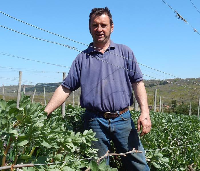 Votre séjour en Madiran vous permet de rencontrer Philippe MUR viticulteur Bio Clos Basté